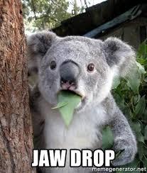 Jaw Drop Meme - jaw drop jawdrop koala meme generator