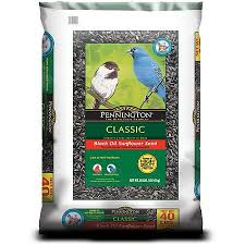 cheap black oil sunflower seeds for birds find black oil