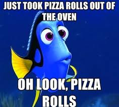 Pizza Rolls Meme - the forgetful dory meme reminds us how stupid we are sometimes