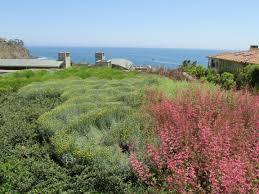 Garden Design Ideas For Large Gardens Garden Design With Lehigh Acres Pool Landscaping Simple Ideas