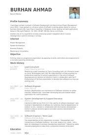 lead consultant resume samples visualcv resume samples database