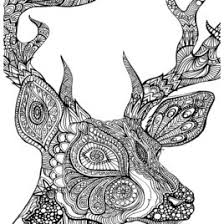 coloring page of deer head kids drawing and coloring pages