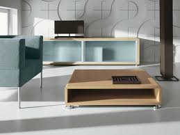 Display Case Coffee Table by Low Coffee Table With Storage Space Ena Club Table Ena Collection