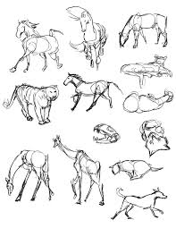 gesture drawing for animals various animals oil pastel gesture
