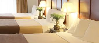 hotel ereal santa clara top ranked santa clara hotels