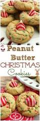 797 best christmas cookies images on pinterest christmas cookies