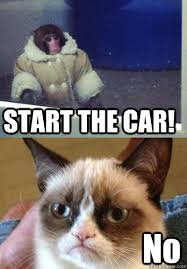 Ikea Monkey Meme - start the car no ikea monkey grumpy cat quickmeme