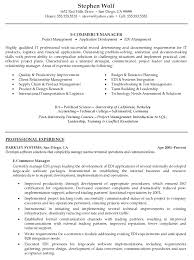 Resume Example For It Professional by Resume Templates Business Development Resume Sample Marketing