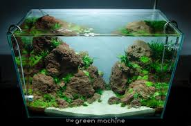 altitude u0027 aquascape by james findley the green machine
