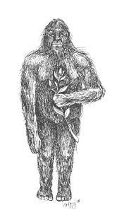 beast of bray road american werewolf wereblog june may2006