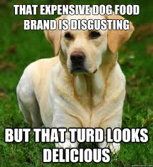 Dog Food Meme - that expensive dog food brand is disgusting but that turd looks