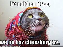 Meme Cheezburger - 2 what is a meme cheezburger meme pinterest meme cat