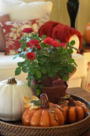 Soft Surroundings Home Decor by 636 Best Autumn Decor Inside Images On Pinterest Fall
