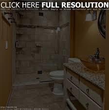 zebra print bathroom ideas bathroom decor