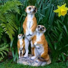 23 best meerkats images on garden ornament garden
