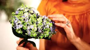 How To Make Roses Live Longer In A Vase How To Make Hydrangeas Last Longer Wedding Flowers Youtube