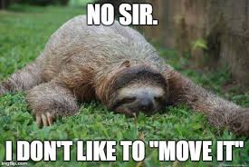 Funny Sloths Memes - the best sloth memes