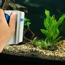How To Clean Fish Tank Decorations Amazon Com Aquarium Glass Cleaner Small Magnetic Algae Remover