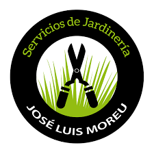 Business Cards For Tree Service Logo Design And Business Cards For Jose Luis Moreu On Behance