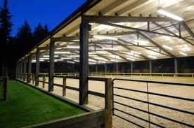 13 best dressage arena ideas images on pinterest dream barn