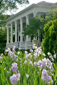 Plantation Style Best 25 Antebellum Homes Ideas On Pinterest Plantation Homes