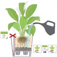 self watering planters of the future hayneedle com