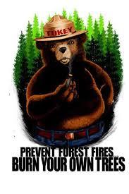 Smokey The Bear Meme - smokey bear smoking weed best bear 2017