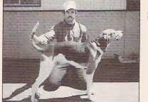 bluetick coonhound dander ukc forums most famous coonhound