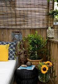 bambus fã r den balkon 69 best sebis balkon images on plants balcony garden
