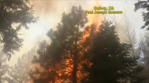 Wild Fire Quincy Ca by Record Heat And Wildfires Sweep The Nation Video