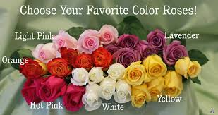 color roses choose your own color dozen bouquet in vase by atkins in