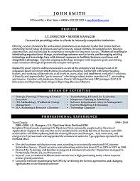 project lead resume sample b2b marketing manager resume resume formt cover letter examples it manager resume sample and tips