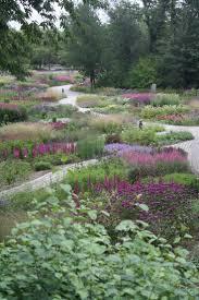 the 25 best no grass landscaping ideas on pinterest no grass