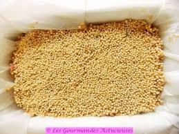 cuisine bio saine graines de potiron grillées frais photos les gourmandes