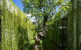 Curtains For Green Walls Green Wall U201d Inhabitat Green Design Innovation Architecture