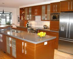 cabinet kitchen cabinets online fascinating kitchen cabinets