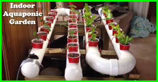 self sustaining garden fresh fruits and vegetables from your own self sustaining