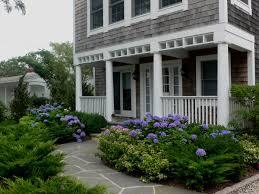 blue hydrangeas in front yard landscape y a r d pinterest