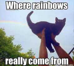 Really Funny Meme - where rainbows really come from funny humor lol meme humor