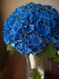 blue flowers for wedding the best blue wedding flowers and 16 gorgeous blue bouquets