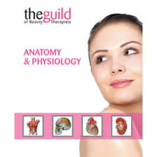 What Is Anatomy And Physiology Class Anatomy U0026 Physiology Certificate Course Tranquillity Holistic