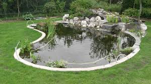Backyard Bassin - construction de bassin bassins de jardin pinterest pond