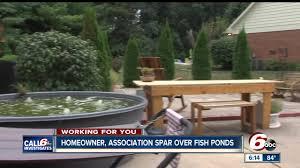 call 6 homeowner association spar over goldfish theindychannel