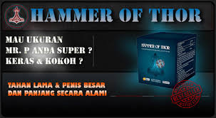hammer of thor asli pembesar penis ampuh alami