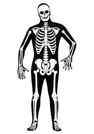 Halloween Pictures Skeletons Skeleton Zentai Suit