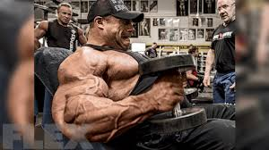 Rene Meme Bodybuilding - how morgan aste built his 24 inch rock solid arms world class