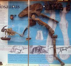 megalosaurus wikipedia