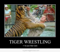 Tiger Meme - 40 most funniest tiger meme images and pictures