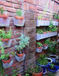 Best Plants For Vertical Garden - vertical garden ideas android apps on google play