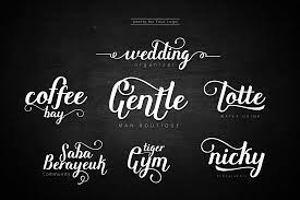 8 fresh script fonts from rabbittype only 12 mightydeals